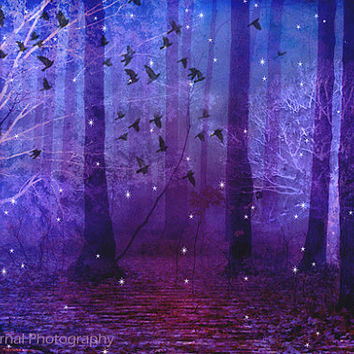 Nature Photography, Surreal Haunting Nature, Purple Woodlands Trees Birds Stars, Fantasy Nature Photo, Dreamland Nature Photo 8x12 or 11x14