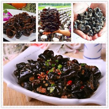 Chinese Mushroom Seeds, 100 Pcs Black agaric plants, Perennial delicious garden  health vegetable Seeds Funny Succulent seeds