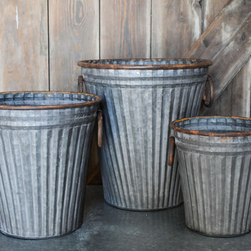 Galvanized Buckets - Set of Three