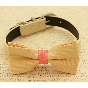 Champagne and coral dog Bow tie collar, Pet wedding accessory