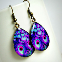 purple peacock photo resin drop earrings, antique brass, boho, bohemian, feather