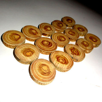Small Wood slices set 15 pieces. Osage Orange wooden discs, natural eco friendly. Wooden slabs Maclura Pomifera. Round wood tags circle wood
