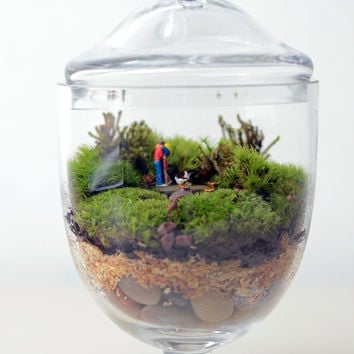 Live Moss terrarium // Little People // Apothecary Jar Planter // Living Home Decor // Indoor Garden // Gift Ideas