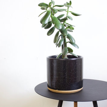 "Ceramic 7"" Planter, Speckled Black / Natural Rim"