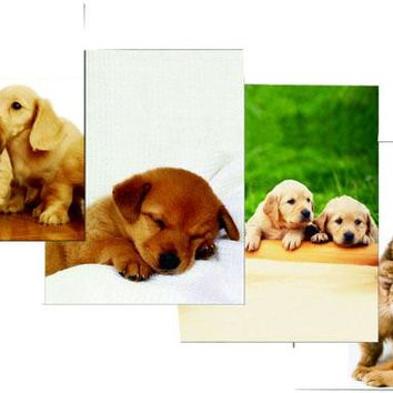 "Two Pocket Folders - Printed Dogs-Cats - 9.25"" x 11.25"" - CASE OF 48"