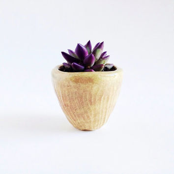 Ceramic Planter - Tiny Pottery Plant Pot - Ceramics and Pottery - Herb Planter