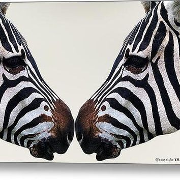 Zebra Love Stretched Canvas Print / Canvas Art By Yanieck Mariani