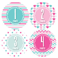 Baby Girl Monthly Baby Stickers Style #393