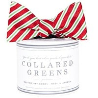 Holiday Stripes Bow in Red by Collared Greens