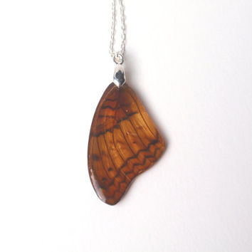 Butterfly wing resin necklace  - Butterfly wing Jewelry, Botanical Jewelry, Pendant Charm Brown Black