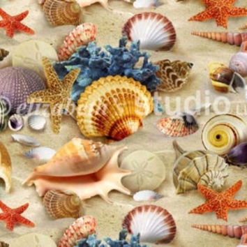 Cotton Fabric, Landscape Medley-Packed Shells, Sand Background, Sewing and Needlecraft Supply