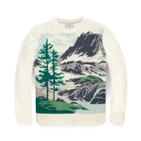 Paint-By-Numbers Sweater