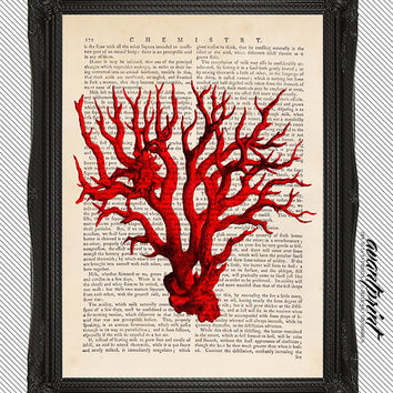 Natural History Red Coral Etching Print on an Unframed Upcycled Bookpage