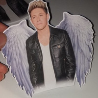 Niall horan sticker :)