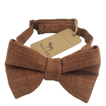 The Brown Squirrel Bow Tie