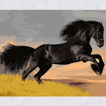 Frameless Picture Animal Horse DIY Digital Oil Painting by Numbers