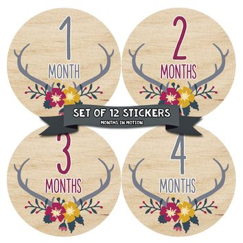 Baby Girl Monthly Baby Stickers - Baby Month Sticker Set of 12