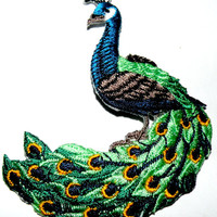 Peacock   This beautiful peacock will add a colorful splash to any of your garments or apparel Applique patch