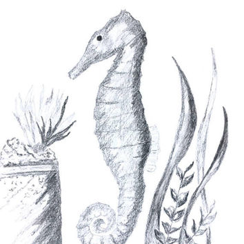 Original drawing, Coastal art, Beach decor, Nautical art, seahorse drawing, black and white, Atlantis graphite drawing, wall art
