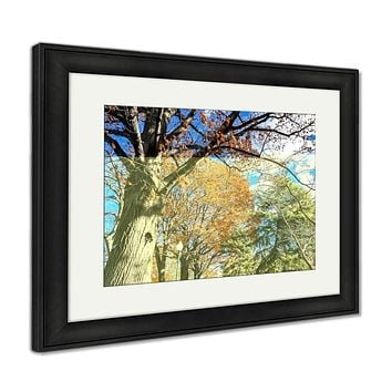 Framed Print, Fall Foliage In An Urban City Park
