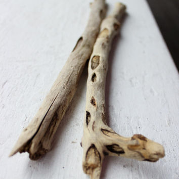 Set of 2 Ultra Rustic Unique Driftwood Branches , Drift Wood Supplies , Natural Art Material , Beach Decoration UW2