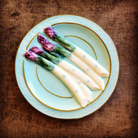 1900s Majolica Asparagus Plate from France