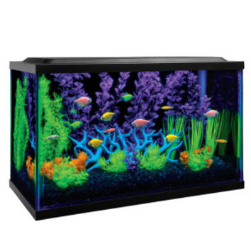 GloFish 10 Gallon Aquarium Kit