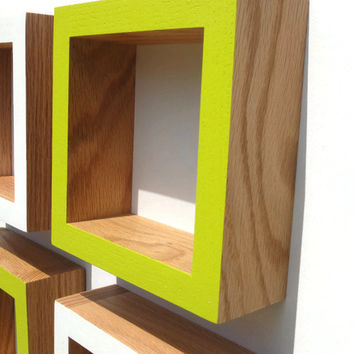 Shadow Box Frame - Oak or Walnut - White ,Lime Pop- FREE SHIPPING