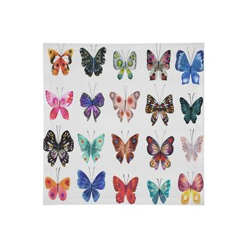 Colorful butterfly specimens