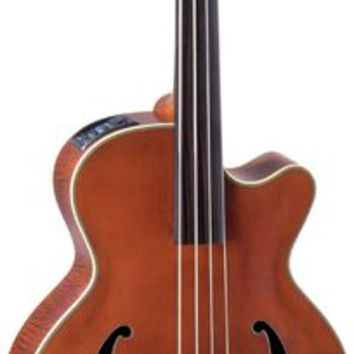 Takamine TB10 Acoustic-Electric Upright Bass | GuitarCenter