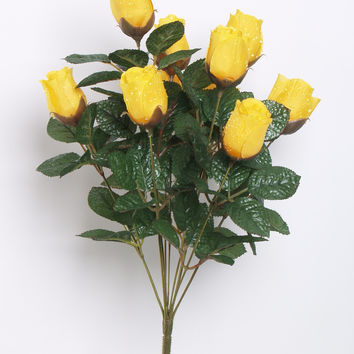 Morning Dew Rosebud Bush - Yellow  BLOW OUT SALE !! 50% OFF