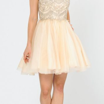 V-Neck Embroidered Champagne Homecoming Short Dress