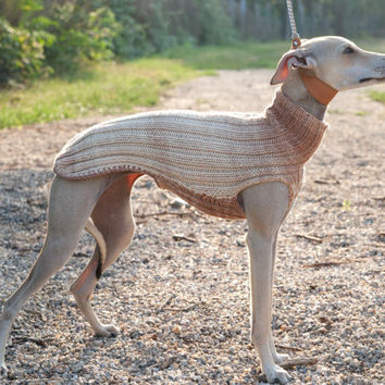 Beige Italian Greyhound Sweater / Jumper / Merino
