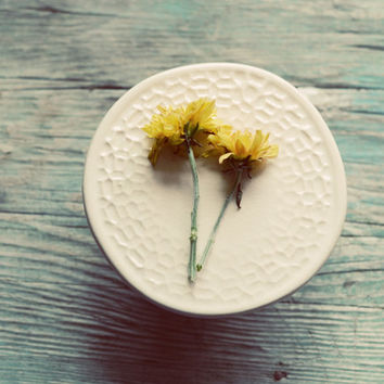 Still life photograph- rustic, floral, yellow, fall, mums, flowers, romantic, teal, french country decor, feminine, fine art photography,