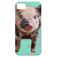 Cute Pig - Blue & Pink Swirls