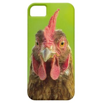 Funny Chicken - iPhone 5 Case