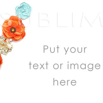 Styled Stock Photography / Instant Download / High Resolution JPEG Digital Image / StockStyle-189
