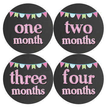 Baby Girl Monthly Baby Stickers Style #334
