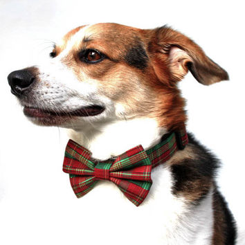 Christmas Dog Collar and Bow Tie / Christmas Tartan / Red & Green Tartan Dog Bow Tie