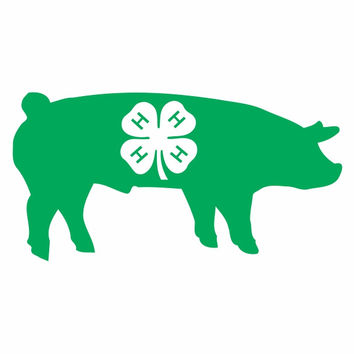 4-H Show Pig Die Cut Vinyl Decal Sticker