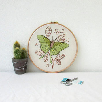 Luna moth hand embroidery, embroidery hoop art, insect art, scientific drawing, entomology, gift for scientist, handmade in the UK