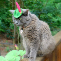 Cat Dog Robin Hood Hat  Peter Pan Hat  Free by ToScarboroughFair