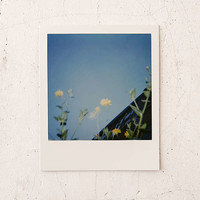 Impossible Color Polaroid 600 Instant Film | Urban Outfitters