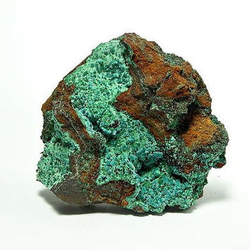 Blue Green Rare Rosasite Botryoidal Crystals on Malachite Very Large Mineral Specimen