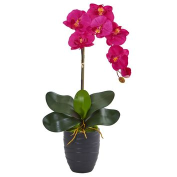 Phalaenopsis Orchid Artificial Arrangement in Black Vase
