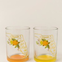 Florida Sunshine State Floral Glasses Set