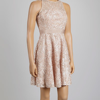 Blush Sheer Lace A-Line Dress