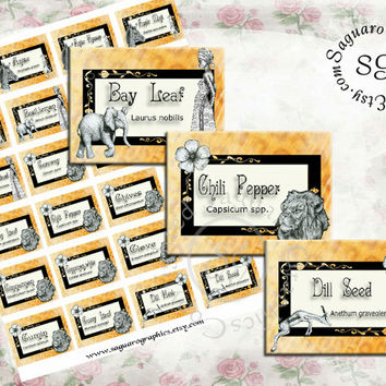 SAFARI sg354 - 2x1.5 inch Spice Labels - 60 Spice Names + Latin names - African Wildlife - Arts & Crafts