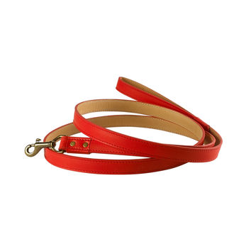 6 ft Dog Leash | Red