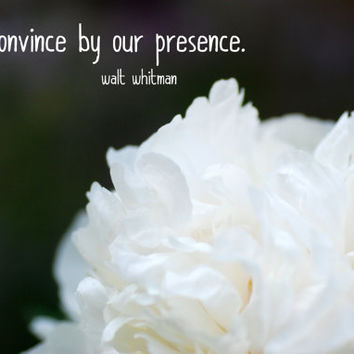 White Peony, Digital Download Photograph, Typography Art, Literary Quote, Charcoal and White, Flower Photography, Walt Whitman Quote